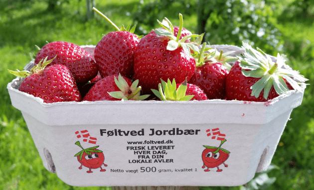 Føltved jordbær bakke